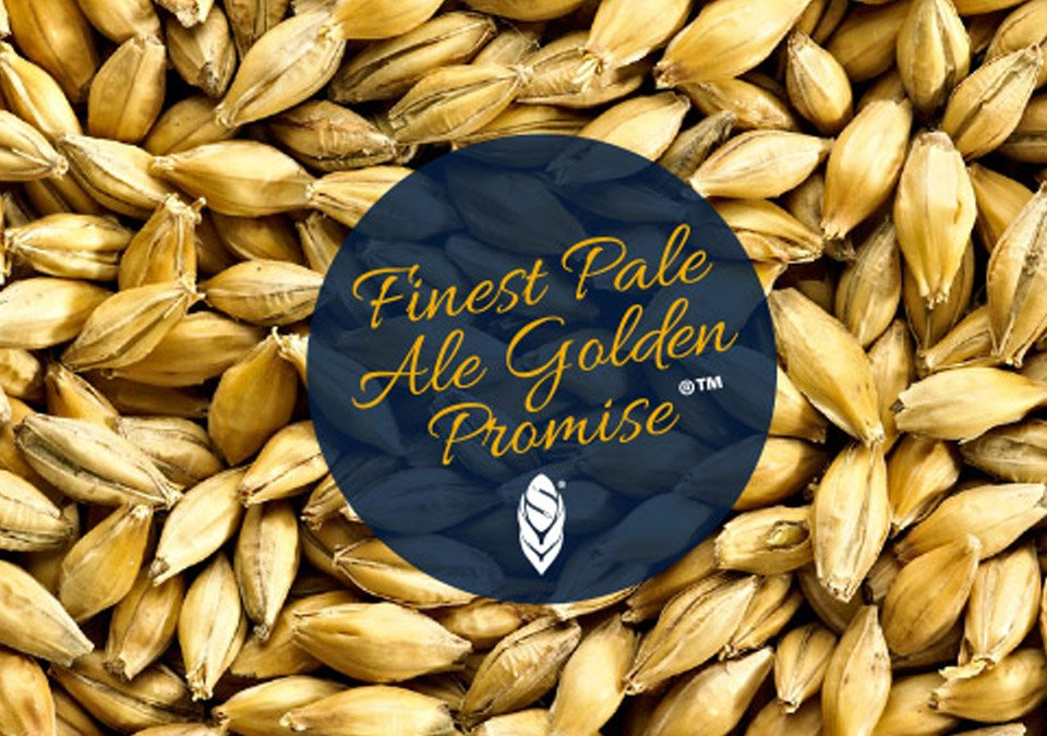Simpsons Golden Promise Pale Ale Malt 3kg Whole